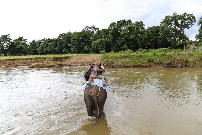 elepant和游人在河在chitwan的森林公园,尼泊尔 免版税库存照片