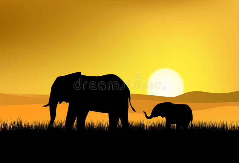 Download Elepant silhouette stock vector. Illustration of evening - 18724405