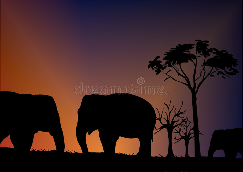 Download Elephant Royalty Free Stock Image - Image: 5139916
