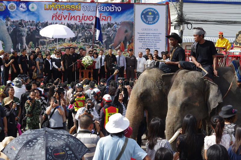 Elephant breakfast royalty free stock images