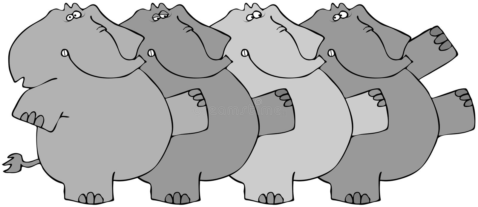 Elephant Chorus Line. This illustration depicts four elephants dancing in a chorus line vector illustration