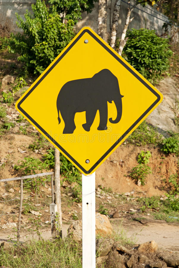 Elephant crossing road sign in thailand