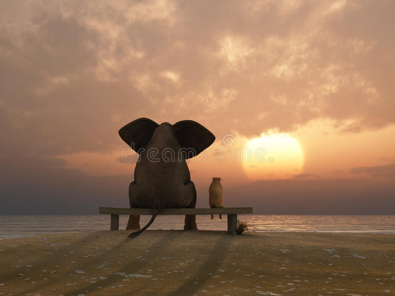 Elephant and dog sit on a beach. Elephant and dog sit on a summer beach