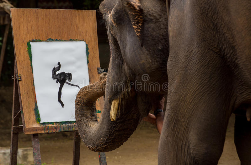 Elephant is drawing art. In the show, Chiangmai, Thailand royalty free stock photos