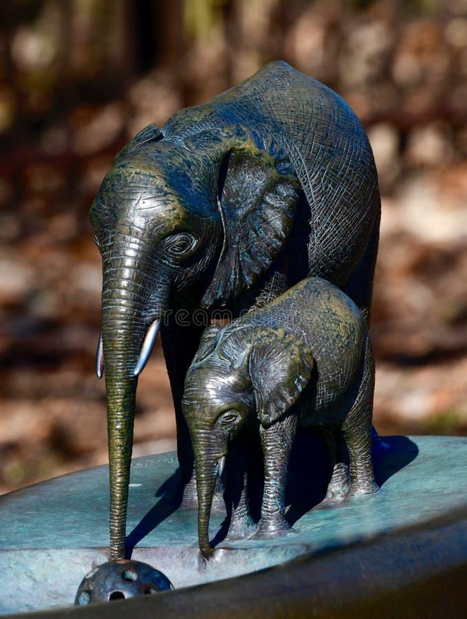Elephant Drinking Fountain stock photography