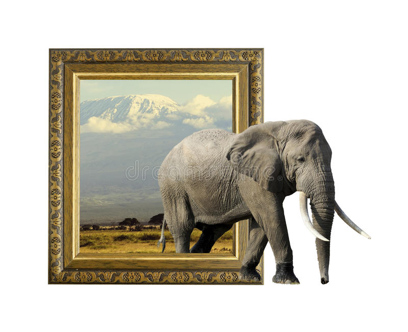 Elephant In Frame With 3d Effect Stock Photo - Image of craft, board ...