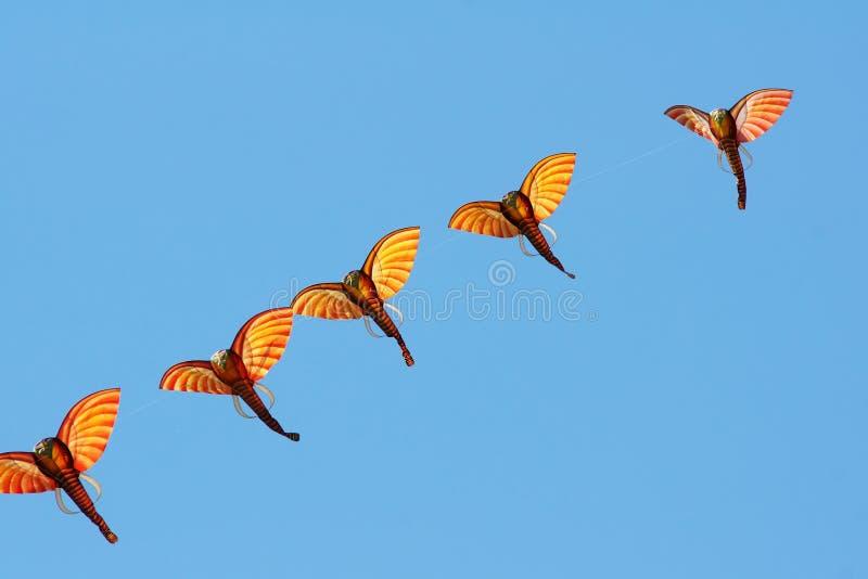 Elephant kites