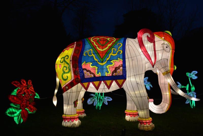 Elephant lantern. Magical lantern festival, Chiswick Gardens stock photography