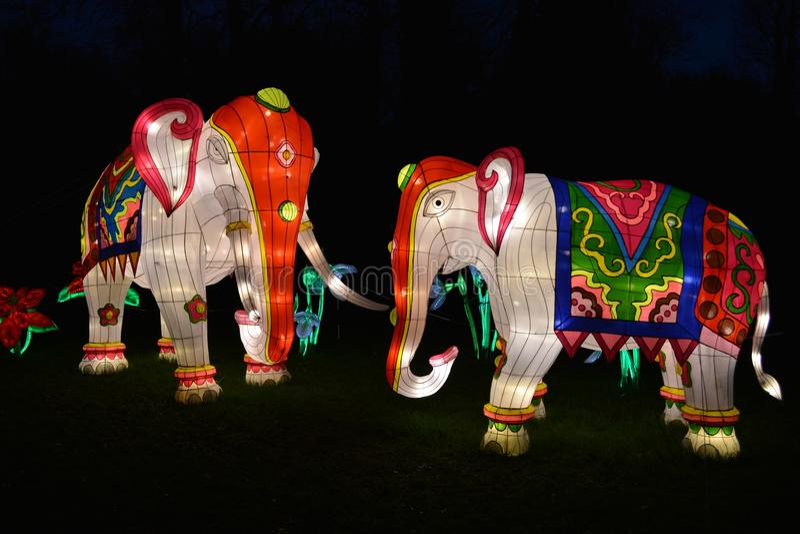 Elephant lantern. Magical lantern festival, Chiswick Gardens royalty free stock image