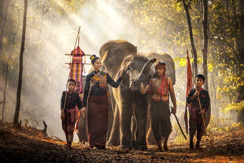 Elephant mahout portrait. Den vilda elefantceremonin för Surinfolket. Kuy Kui Thailand. Mattan och royaltyfri bild