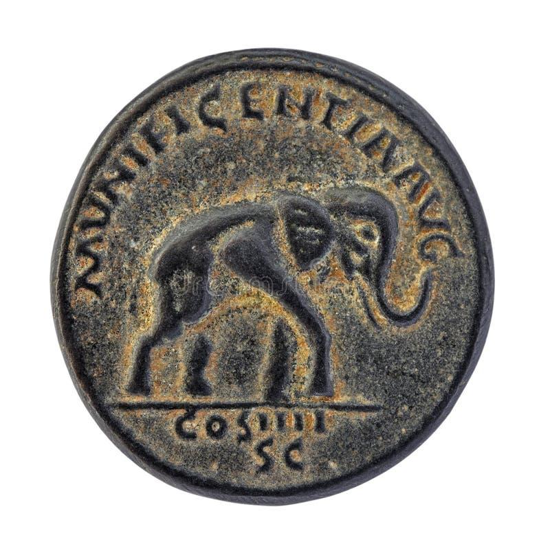 Elephant on old roman coin royalty free stock photos