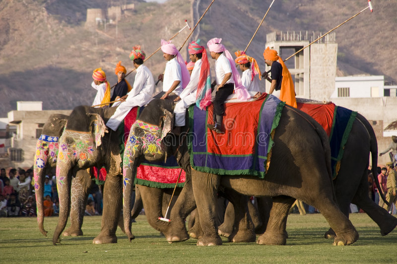 Elephant Polo in Jaipur, Rajasthan, India. Group of elephants playing polo at the Elephant Festival in Jaipur, Rajasthan, India. Usually held the day before the stock photos