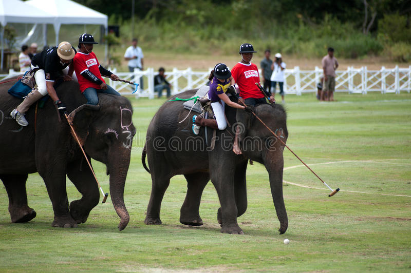 Elephant polo game. HUA HIN, THAILAND -SEPTEMBER 8: Unidentified polo players play in elephant polo games during the 2011 King's Cup Elephant Polo match on royalty free stock images