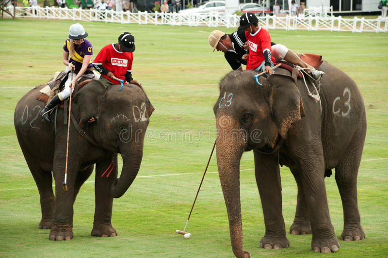 Elephant polo game. HUA HIN, THAILAND -SEPTEMBER 8: Unidentified polo players play in elephant polo games during the 2011 King's Cup Elephant Polo match on stock photos