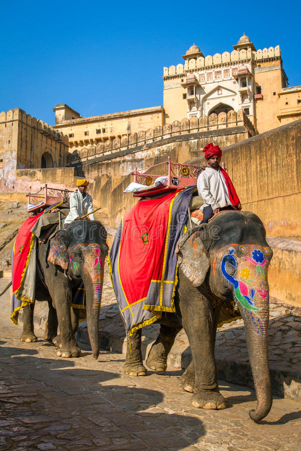 Elephant riders in the Amber Fort near Jaipur, India stock photography