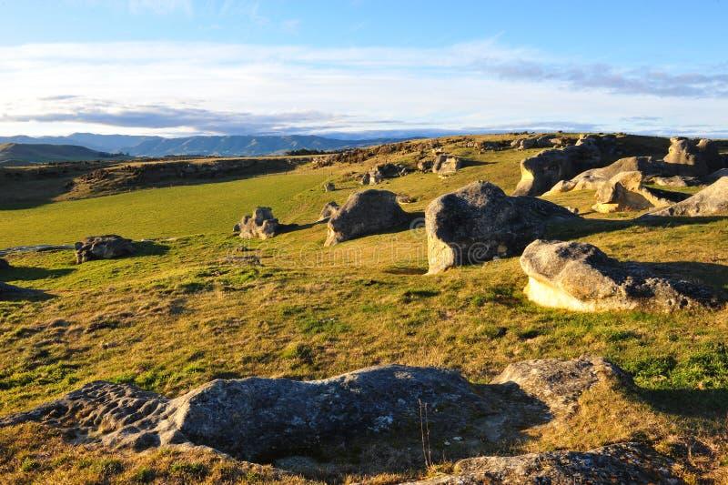 Elephant rocks in New Zealand stock images