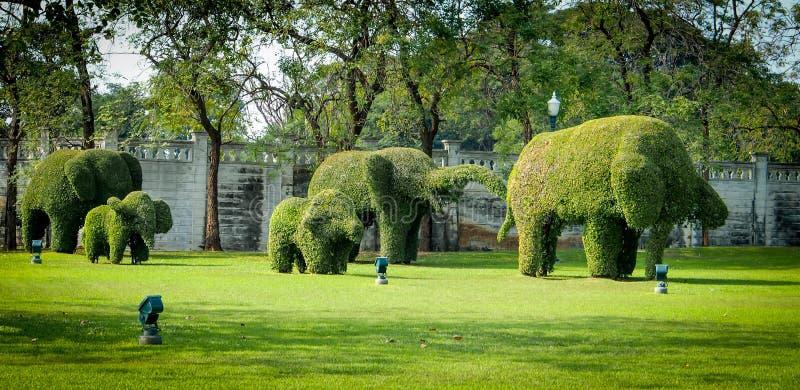 Elephant shape cutting design tree on green field royalty free stock photos
