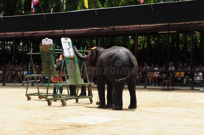 Elephant show, an elephant painting. Nong Nooch Garden, Thailand - May 5,2011 - Elephant show, an elephant painting royalty free stock photos