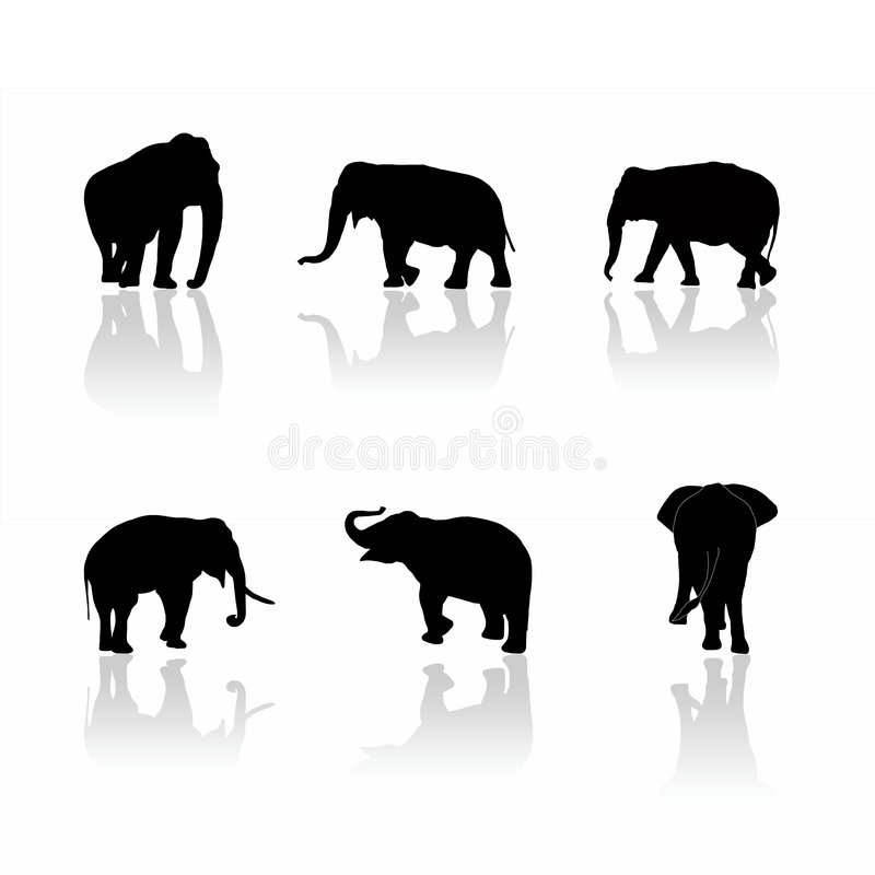 Elephant silhouettes. Black elephant silhouettes on white background with shadows stock illustration