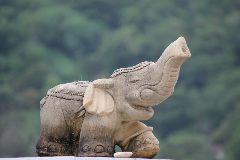Elephant in Thailand is a sacred animal and a symbol of the country stock photography