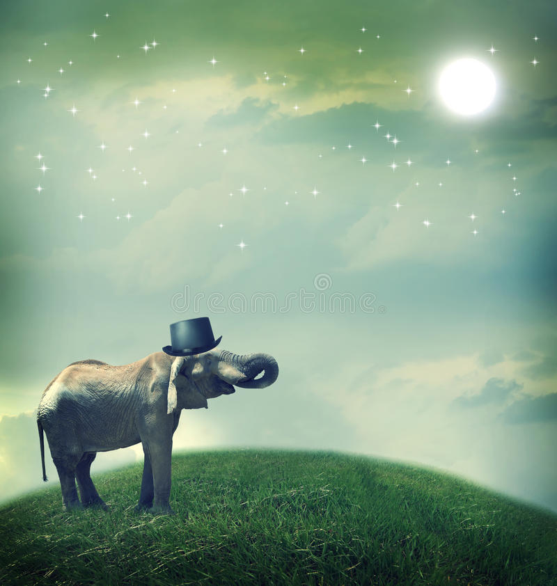 Elephant with top hat on fantasy landscape stock images