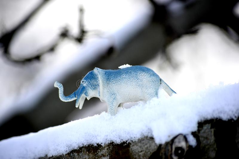 Elephant toy figurine on snow, climate change concept. Image stock photos