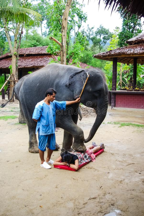 Elephant training. Circus performance in Thailand with an elephant on the street stock photos