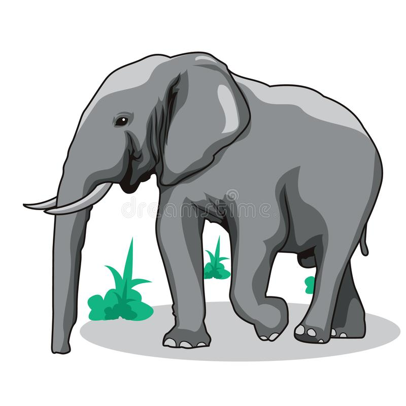 Elephant vector illustration. Elephant animal wildlife vector art stock illustration