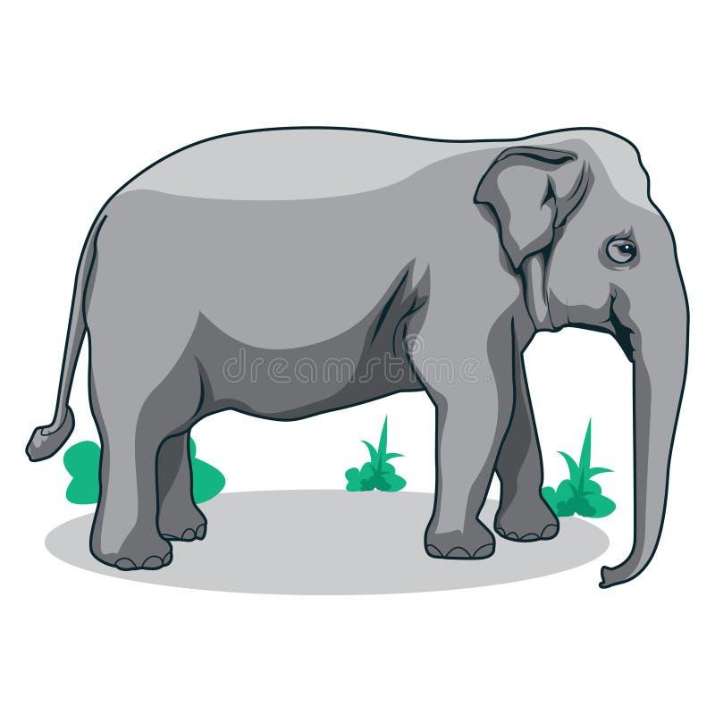 Elephant vector illustration. Elephant animal wildlife vector art. Vector design element royalty free illustration