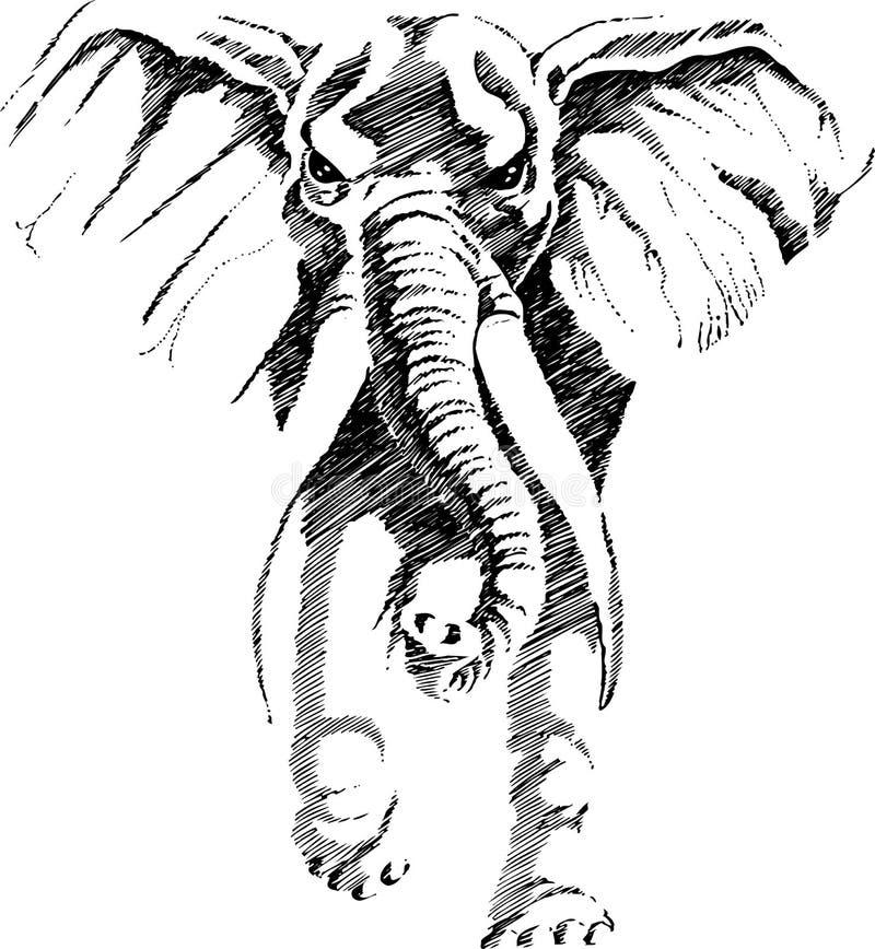 Elephant. Vector illustration of a tribal totem animal - Elephant - in graphic style vector illustration
