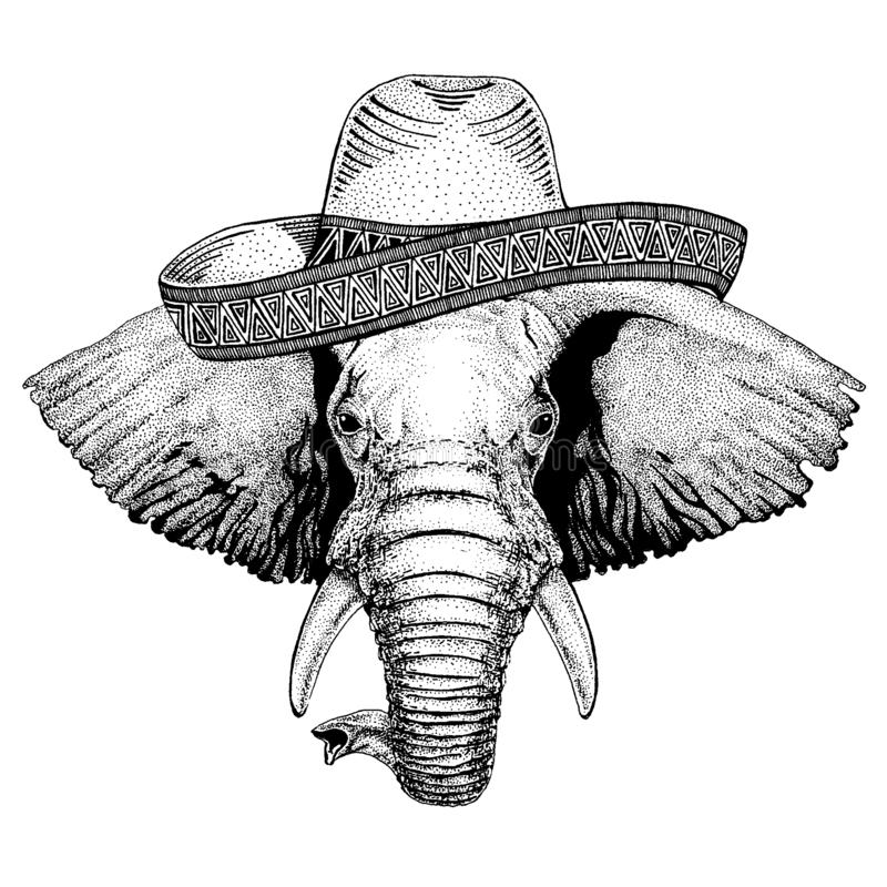 Elephant wearing traditional mexican hat. Classic headdress, fiesta, party. Elephant wearing traditional mexican hat. Classic headdress, fiesta, party vector illustration