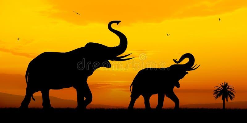 Elephants. Couple of elephants on sunset background stock illustration