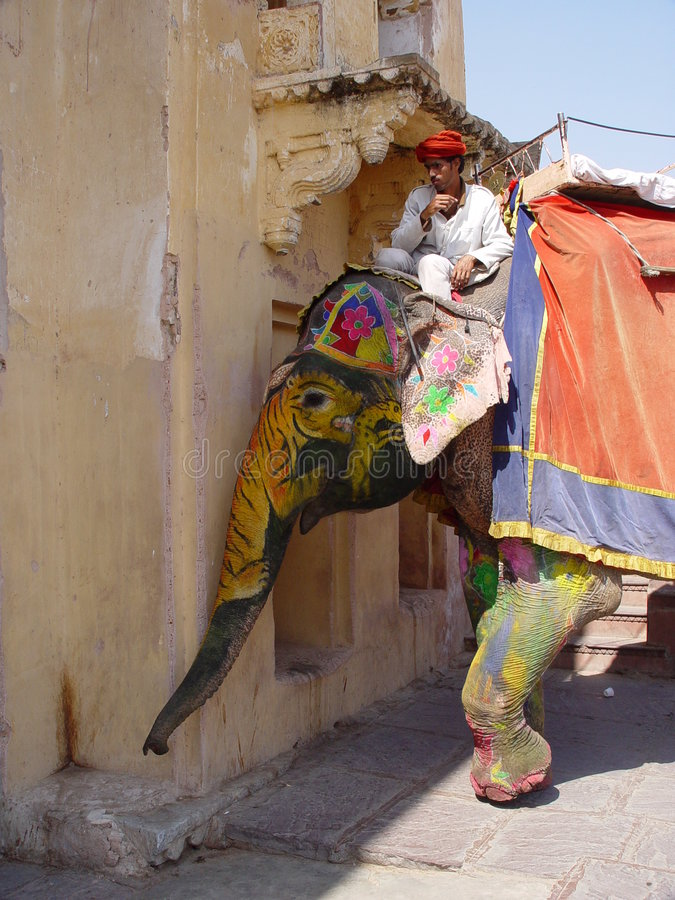 Elephants of Amber fort royalty free stock images