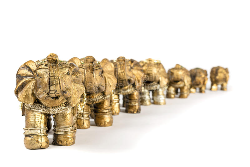 7 elephants royalty free stock images