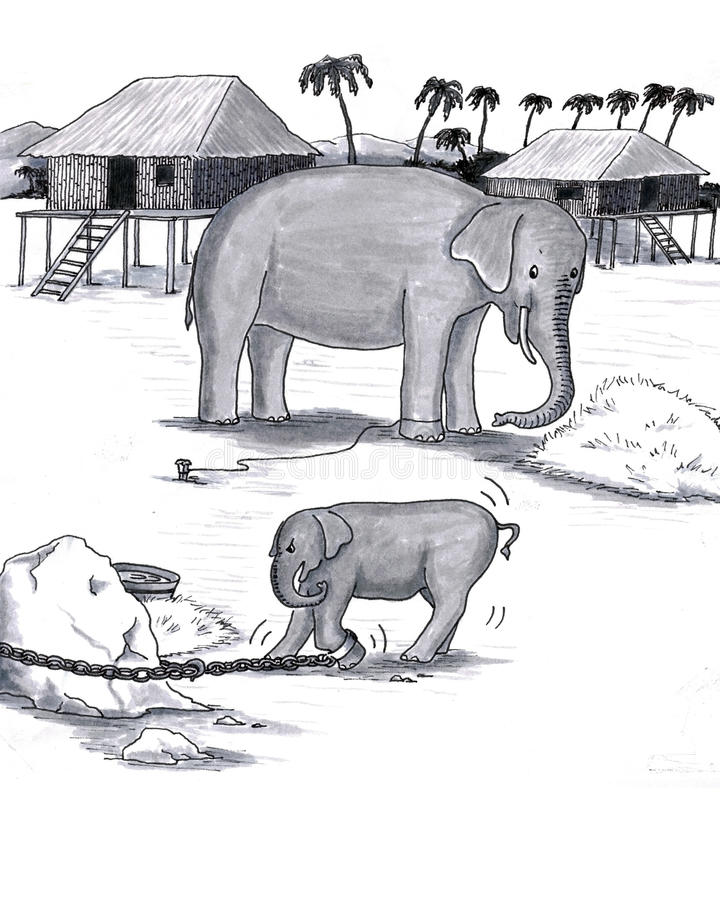 Elephants Held Captive. Older and younger pachyderm; baby attached to heavy chain, adult trained to stay with just rope vector illustration