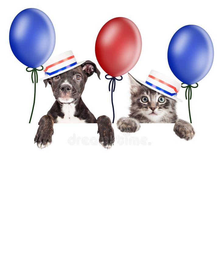 Elettori dell'americano del cucciolo e del gattino fotografia stock libera da diritti