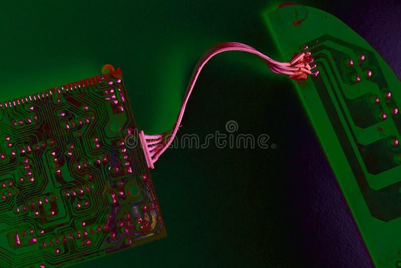 ELETTRONICA Purpurea ed ELETTRONICA Verde immagini stock libere da diritti