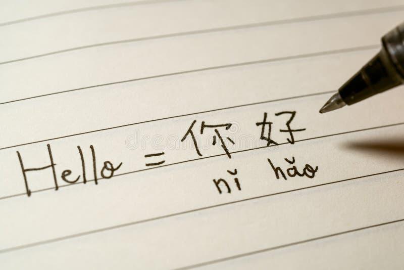 Elev för kinesiskt språk för nybörjare som skriver Helloordet Nihao i kinesiska tecken och pinyin på en anteckningsbok arkivfoton
