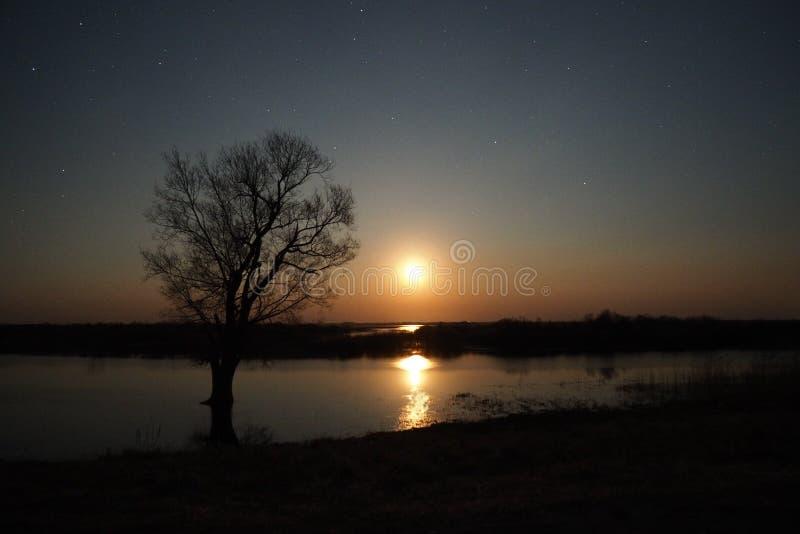 Elevação da lua e reflexão clara observando sobre o lago fotografia de stock royalty free