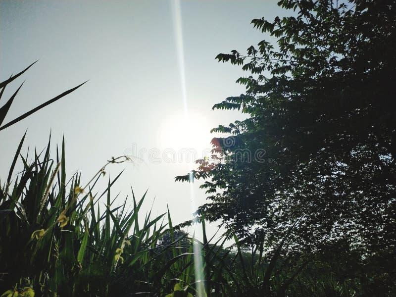 Elevação de Sun na manhã imagens de stock