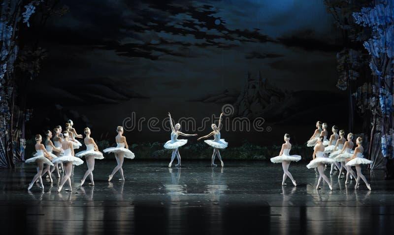 A elevação e a dança da cisne em pares em um humor-bailado feliz O Lago das Cisnes foto de stock royalty free