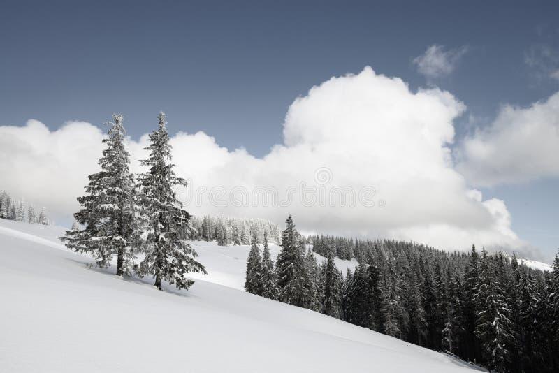Elevação mágica do inverno nas montanhas fotografia de stock royalty free