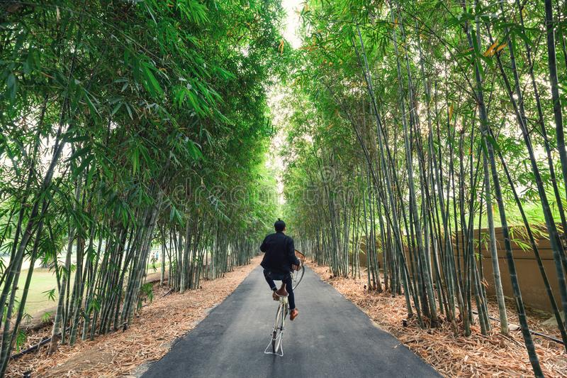 Elevación del hombre joven que rueda con la bici en el bosque de bambú foto de archivo libre de regalías