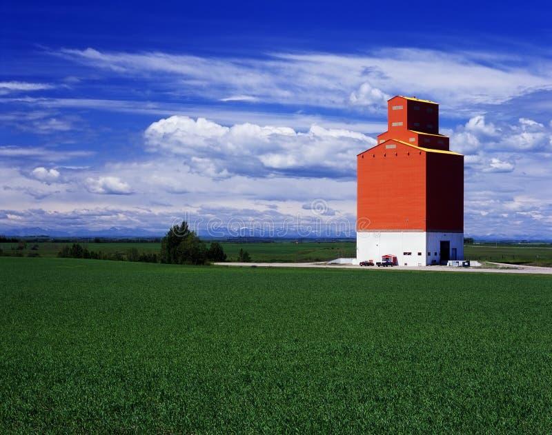Elevador de grão alaranjado em campos verdes fotografia de stock