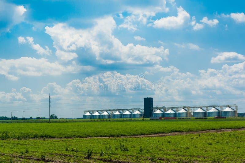 Elevador de grano en un campo verde El cielo nublado azul Negocio agrícola Los camiones van al cargamento Primavera Plantas verde imagenes de archivo