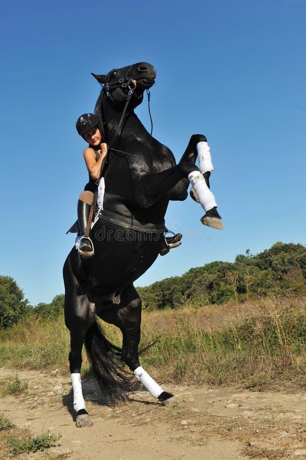 Elevando o cavalo foto de stock royalty free