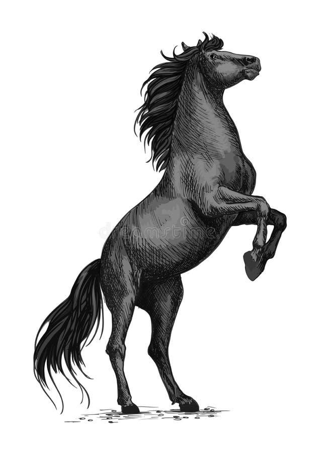 Elevando o esboço preto do cavalo para o esporte equino projete ilustração stock