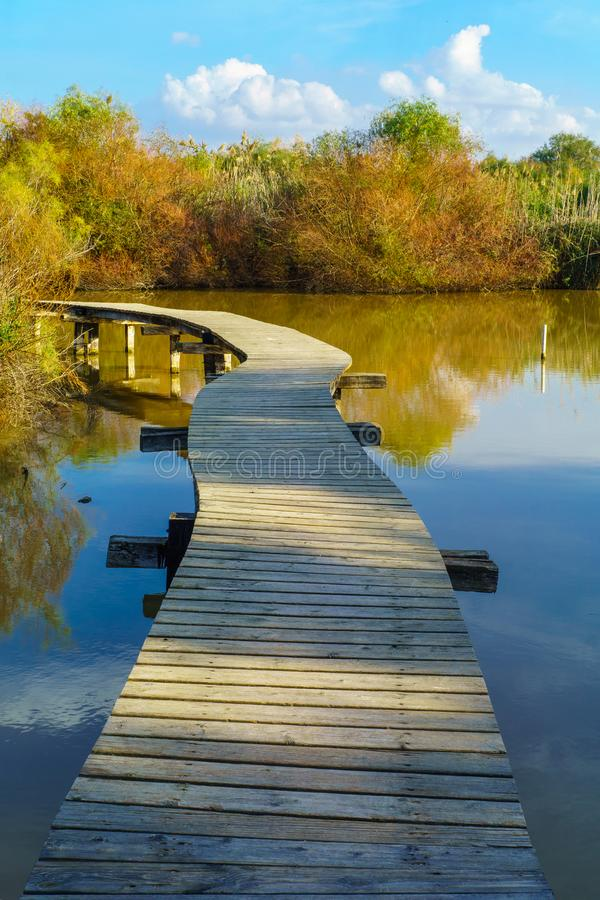 Elevated footpath over the water in En Afek nature reserve stock photo