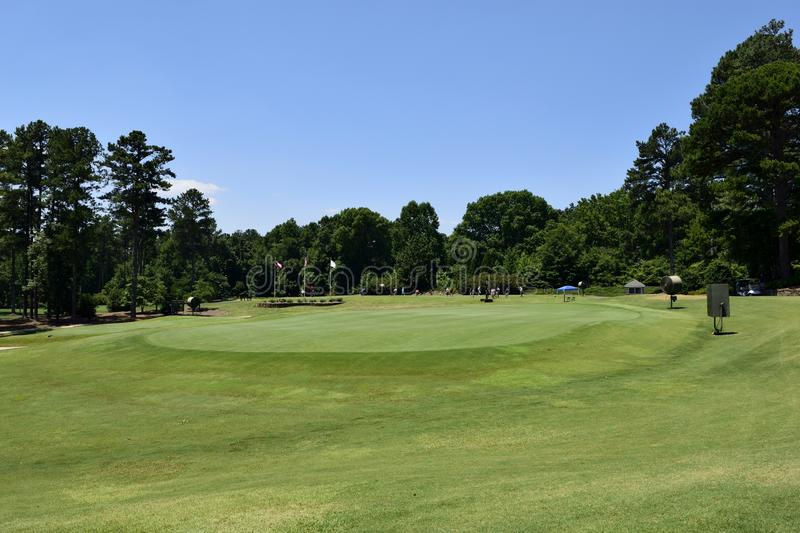 Elevated green at golf course, Georgia, USA. Elevated green with rough and tree lined fairway at golf course in Georgia, USA on sunny day royalty free stock image