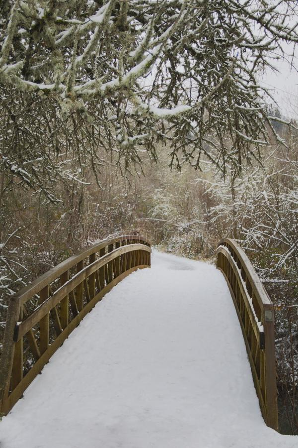 Elevated Off Center View of Snow Covered Wooden Bridge in Wooded Area, Daytime stock photo